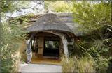 Vacation Hub International - VHI - Travel Club - Royal Tree Lodge